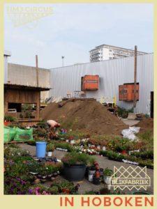 Blikfabriek tuin